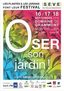 Festival SEVE 2016